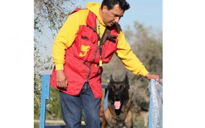 Perros de seguridad para proteger contra los maltratadores